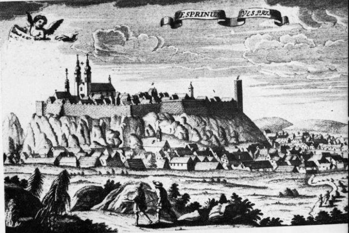 Friedrich Bernhardt Werner 1730 körüli rézmetszete